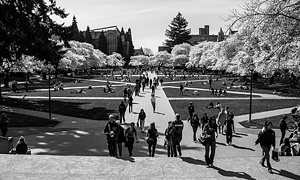 public-sector-image-college-campus-bw