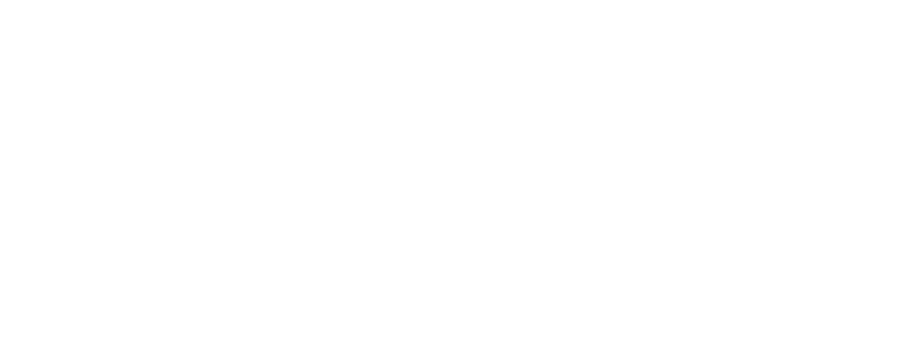 Direct Travel logo no tag white
