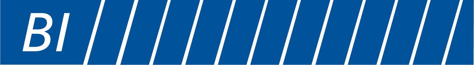 PUBLIC | BI | BI_GEO logo_Pantone287_no tagline
