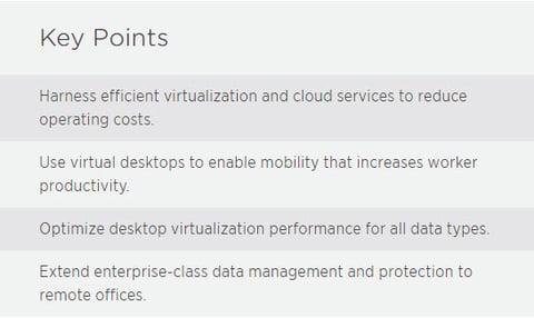 NetApp Key Points Virtulization