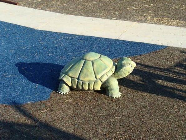 Turtle Playground