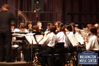 Side shot of woodwind section orchestra