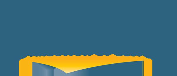 Network Services Company logo