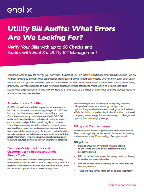 Utility Bill Audits: What Errors Are We Looking For?