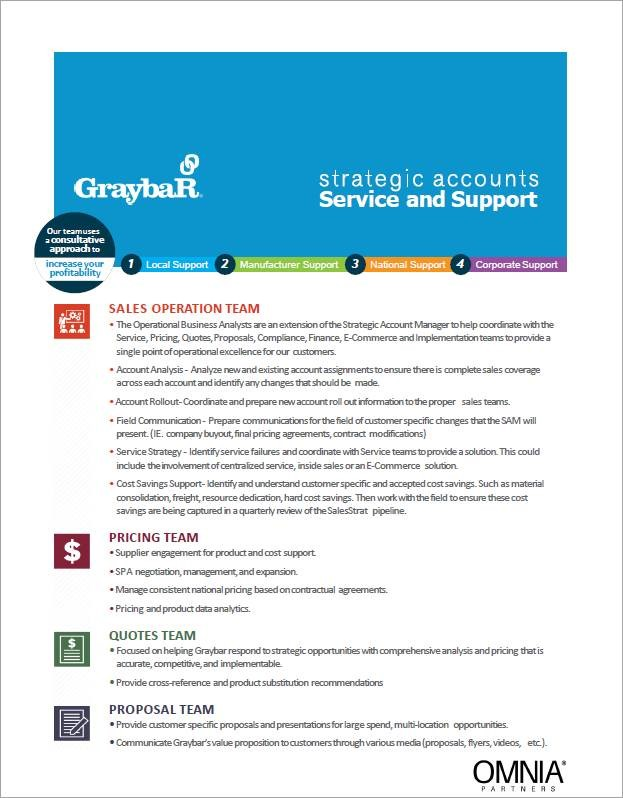 Strategic Accounts Service and Support