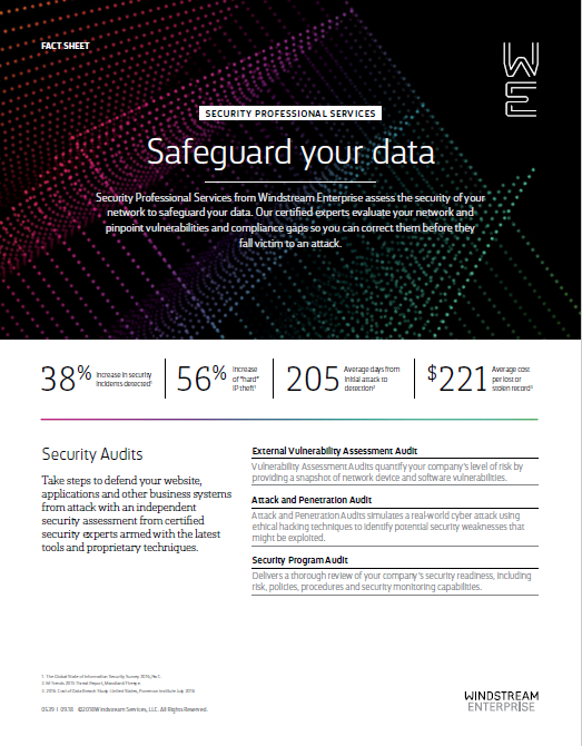 Fact Sheet: Pro Services Security Audits